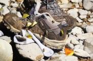Butterflies enjoying damp smell shoes!